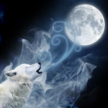 The Cold Wolf Moon After The Yule