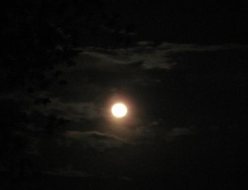 img-moon8