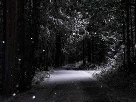 Snowy Night Poem