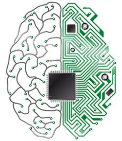 rewired-brain