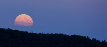 reddish moon