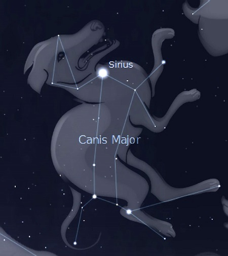 Sirius-Dog-Star