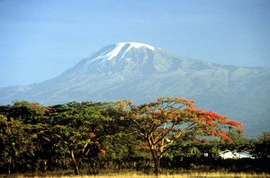 kilimanjaroo