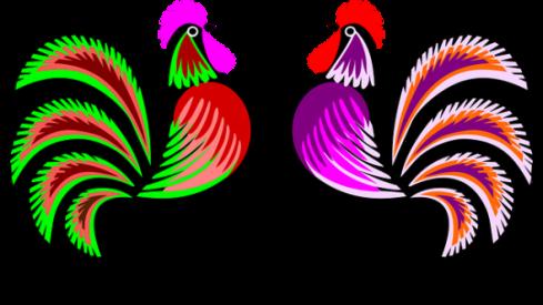 roosters-pixa
