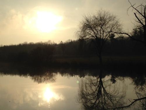lake winter sun