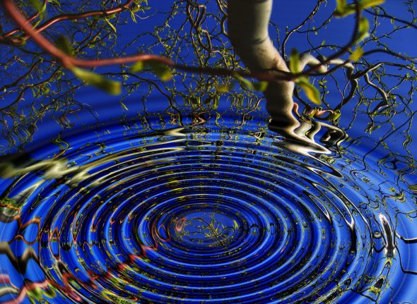 ripples pex