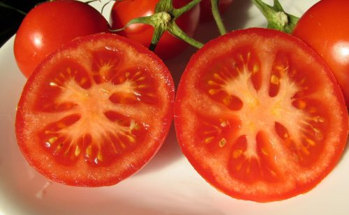 sliced red tomatoes