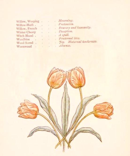 """""""w"""" flowers"""