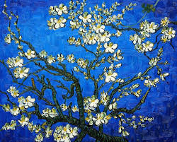 almond branches blue