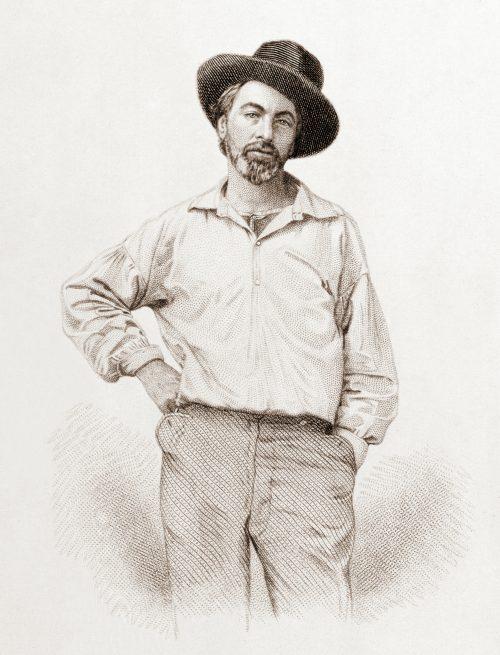 whitman 1854