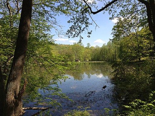Ghost Lake Trail