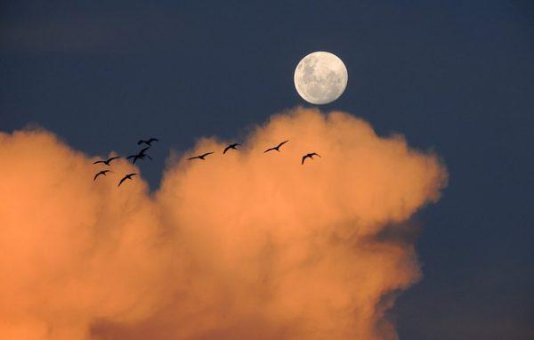 full moon orange clouds