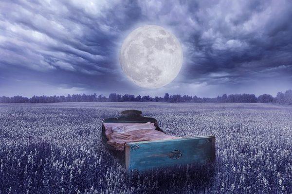 moon meadow bed