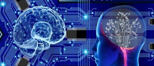 computer and brain