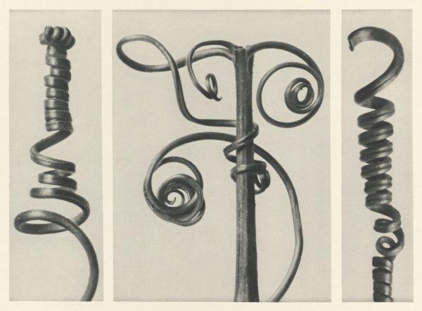 pumpkin spirals